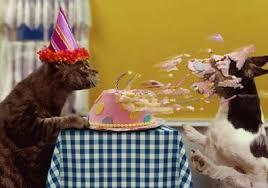 Happy Birthday Terbo ! Images?q=tbn:ANd9GcTFLd0IMK7gJFj4fDKkLzYIOobew-Y5x9_PkKGFZ1HH0NClkNcIeg