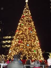 Small Picture Huge Christmas Tree Resume Format Download Pdf Filehuge At City