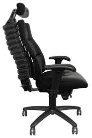 Desk Chair For Back Pain Verte Executive Office With Design Decorating
