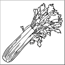 celery clipart black and white. Clip Art Celery Abcteachcom Preview With Clipart Black And White