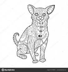 Chihuahua Hond Kleurplaten Boek Vectorillustratie Stockvector