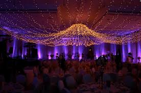 Our unique fairy light canopy effect is achieved by carefully hanging,  literally thousands of ...