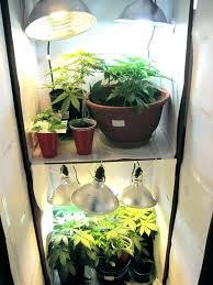 grow room setup closet grow setup indoor grow setup closet best indoors indoor grow room setup