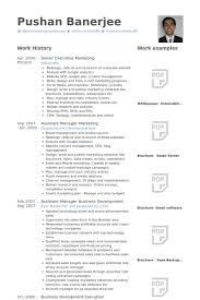 senior executive resume senior executive resume samples visualcv resume samples database