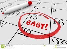 Pregnacy Clander Baby Due Date Delivery Pregnancy Calendar Stock Illustration
