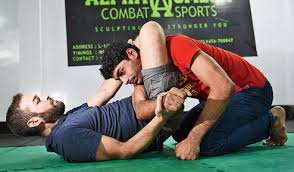 <b>Mix it</b> up with some mixed <b>martial arts</b> - Telegraph India