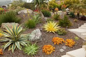 Small Picture Download Succulent Garden Design adhome