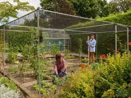 garden cages. Modren Garden Fruit Cages Cages To Garden