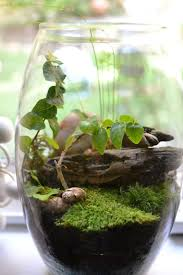 jam jar gardens ideas and projects