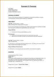 Profile Resume Examples Thrifdecorblog Com