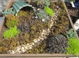 how to create a fairy garden your step