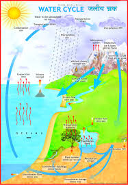 Buy Water Cycle Chart Book Online At Low Prices In India