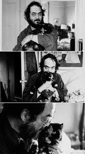 Stanley Kubrick with his cat Polly. | Stanley kubrick, Kubrick, Celebrity  photos