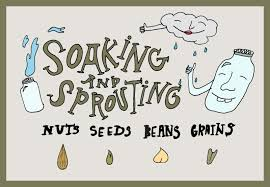 An Illustrated Guide Benefits To Soaking And Sprouting