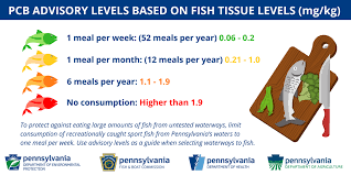 High Mercury Fish Chart Fish Consumption Advisories