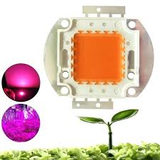 diy cob led grow light full spectrum cob led grow light chip for indoor plant cod