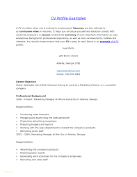 Profile In Resume Sample Inspirational Sample Resume Profiles Sample Resume Profiles 8