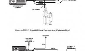 genuine sony cdx gt210 wiring diagram unusual sony cdx gt210 wiring Sony Xplod Wiring Color Code genuine small engine ignition coil wiring diagram wiring diagram ignition coil hbphelp me