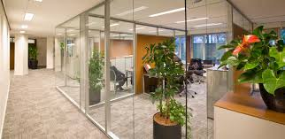 glass partition walls glass walls