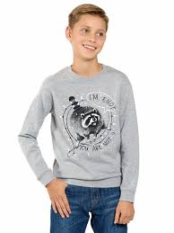 Джемперы, <b>толстовки</b> для мальчиков, купить в Москве - <b>Pelican</b>