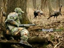 Download FREE Computer Wallpapers from Remington Daily Bulletin