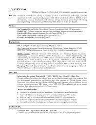 Resume Of An It Professional Sample Professional Resume Sample