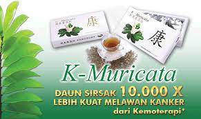 Image result for k muricata dan amazon plus