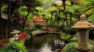 Japanese Style Garden Bridges Other Japanese Garden Bridge Pond Building Trees World Wallpaper