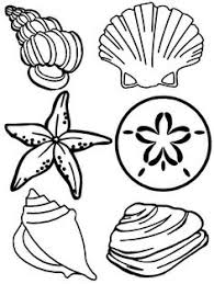 Small Picture Seashell Shell Coloring Pages Sea Shell Seashell Coloring Pages
