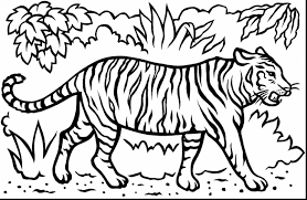 Small Picture Magnificent bengal tiger coloring pages with tiger coloring page