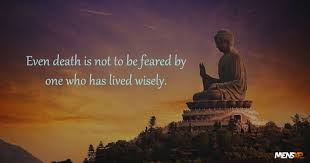Enlightening Quotes 100 Enlightening Quotes Buddha That Will Change The Way You Look 30
