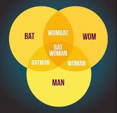 Best Venn Diagram Ever The Best Venn Diagram Ever 9gag