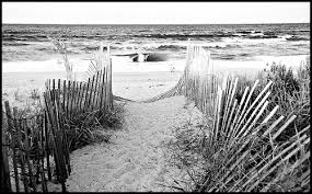 Image result for Black and white ocean