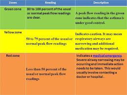 Asthma Zone Chart Peak Flow Meter Zone Chart Www Bedowntowndaytona Com