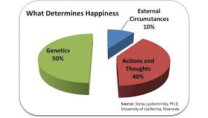 Determines Happiness Pie Chart Science Of Happiness Happy