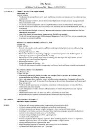 Direct Marketing Resume Samples Velvet Jobs