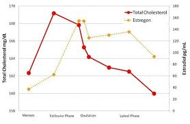 Typical Menstrual Cycle Chart Womens Cholesterol Levels Vary With Phase Of Menstrual