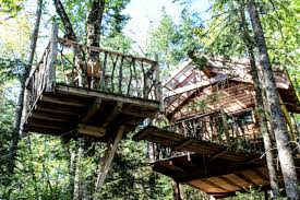 tree house plans for one tree. Like This Tree House. The House Plans For One S