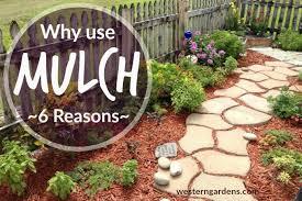 garden mulch.  Garden Reasons To Use Mulch In Your Flower Beds In Garden Mulch