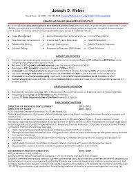 Resume Loss Mitigation Resume