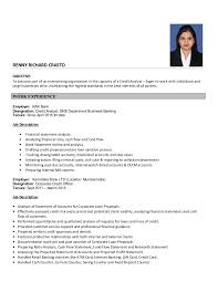 Credit Analyst Resume Credit Analyst Resume
