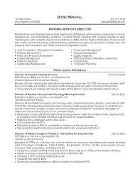 Professional Resume Objective Customer Service Skills Resume 638 825 Resume Objective
