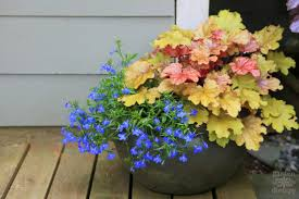 Small Picture Decorative Ideas for Creating a Summer Container Garden Garden