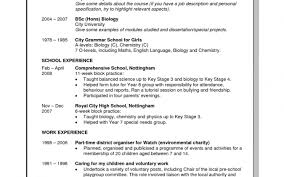 Key Skills In Resumes Skill Based Resume Summary Examples Regarding