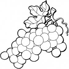 black and white grapes clipart. Fine Grapes White With Black And Grapes Clipart A