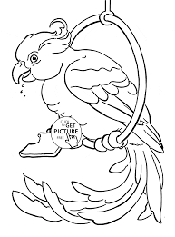 Pet Parrot Coloring Page For Kids Animal Coloring Pages Printables