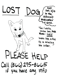 how to make lost dog flyers lost dog flyers template found poster google slides aplicatics co