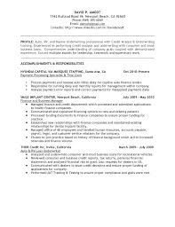 Fraud Analyst Sample Resume Fraud Detection Investigator Resume