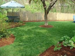 Backyard Paradise Landscaping Ideas Home Design Ideas New Backyard Paradise Landscaping Ideas