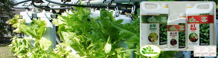 with HydroLush Hydroponic Nutrients, mixing your own hydroponic solution  is easy